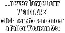 ...never forget our VETERANS click here to remember a Fallen Vi